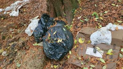 Wiltshire Council and MOD Police clamp down on fly-tipping on Salisbury Plain