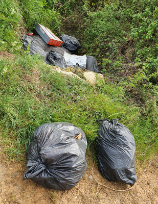 Picture of waste on a grass verge
